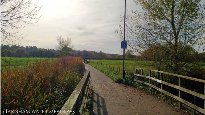 Blog Salisbury pic 5.jpg