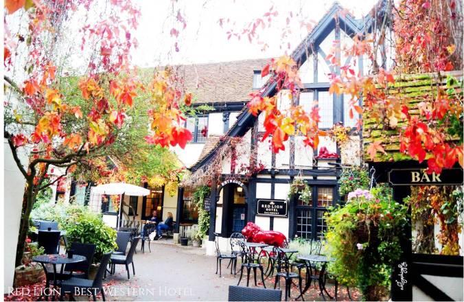 Blog Salisbury pic 6.jpg